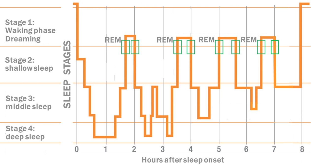 Sleep Behaviour Research Foundation For Electricity And Mobile Communication